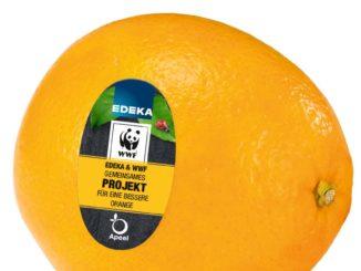 Pflanzlicher Schutzmantel für Obst und Gemüse von Apeel