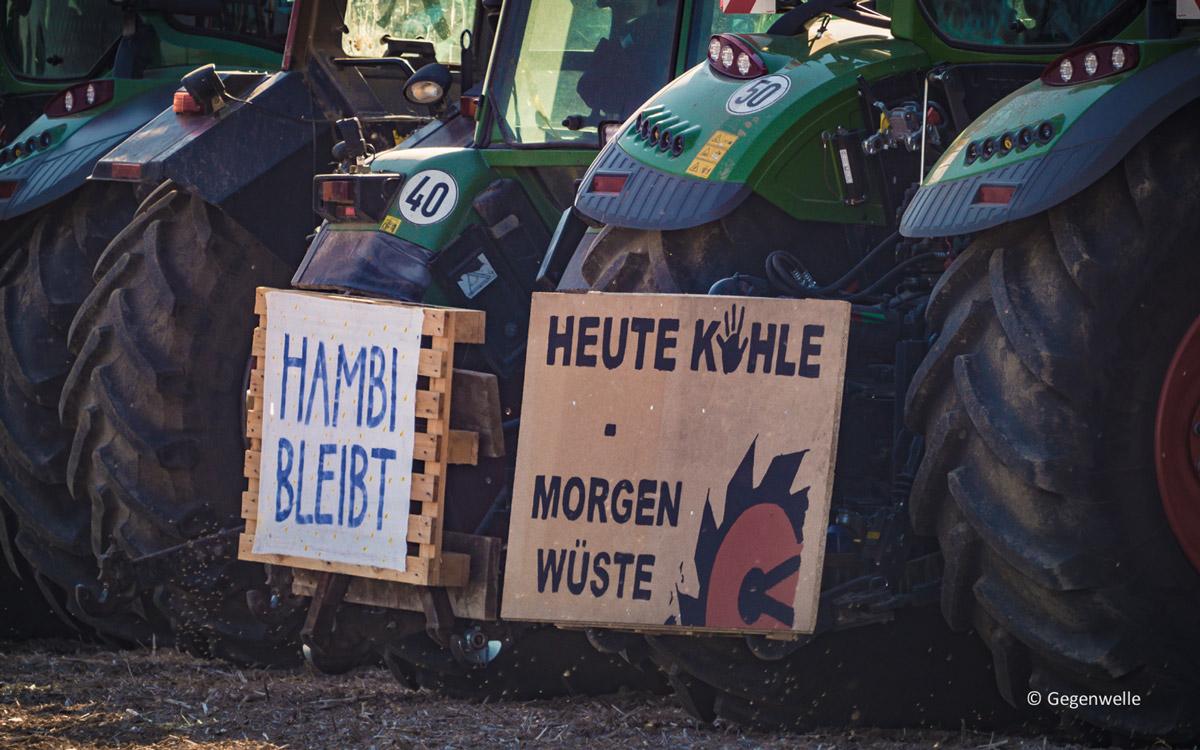 Klage abgewiesen | Hambacher Forst darf gerodet werden