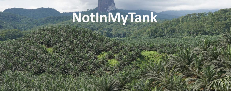kein Palmöl im Diesel